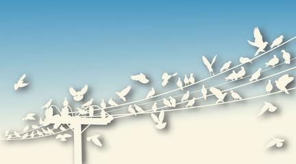 Bird roost cutout