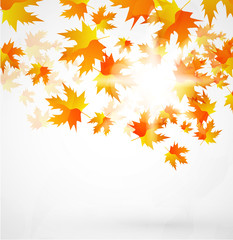 Abstract vector autumn background