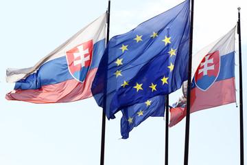 Slovak flag, EU flag, flags