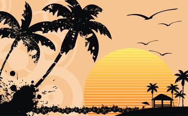 hawaiian tropical beach background2