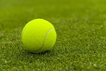 Tennis ball on a lawn court