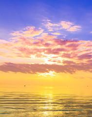Horizon Gold Panorama