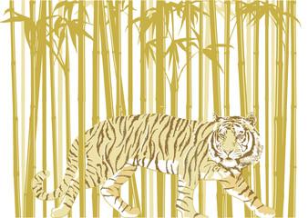 Tiger im Bambuswald