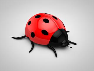 3d Ladybird