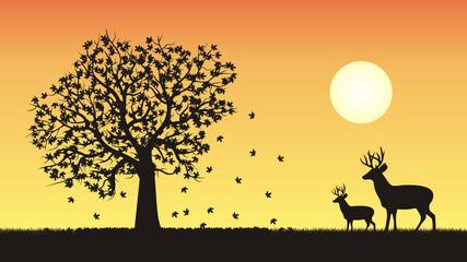 Cztery pory roku - jesień
