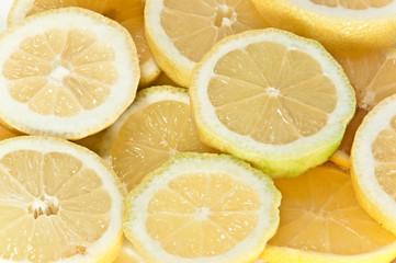 Tuinposter Plakjes fruit Zitronenscheiben - Makro