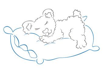 Illustration of sweet bear sleeping on pillow