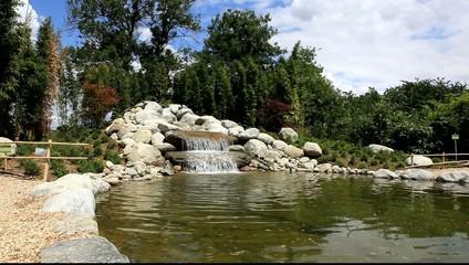 Photos illustrations et vid os de bassin aquatique for Bassin decoratif