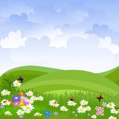 Photo sur Aluminium Coccinelles landscape lawn flowers