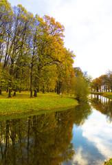 Park Landscape Autumn