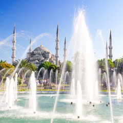 Blue Mosque in Summer