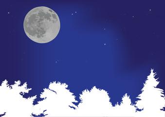 white trees under full moon
