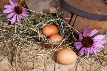 uova covate con botticella in legno