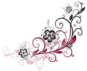 Ranke, flora, Blumen, Blüten, filigran, schwarz, pink