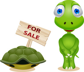 Turtle sell his house