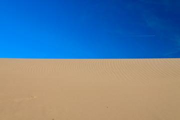 Bird footprint in the sand