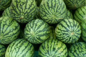 watermelon tropical