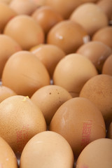 Rows of egg shells.