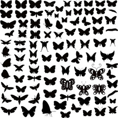 Butterflies Silhouettes Designs Collection