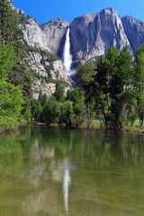 Wall Mural - Yosemite Fall