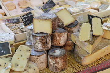 French cheese at Provence market