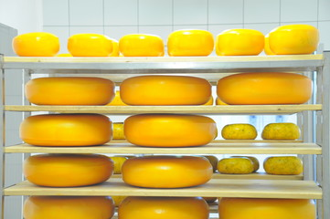 reifender Käse