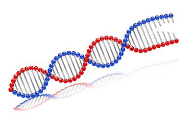 Obraz DNA_color © apernak #00002 - fototapety do salonu