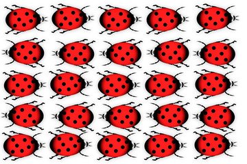 Ladybugs on white background.