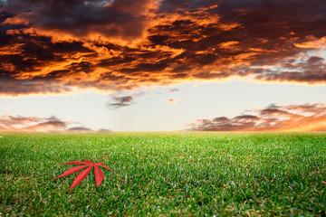 Prato e Cielo al tramonto
