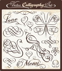 Vector Calligraphy Set