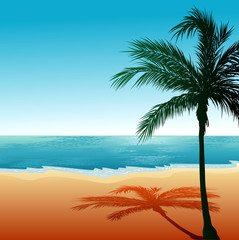 Beach Background 6