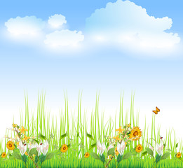 Green Grass with flowers And Blue Sky, Vector Illustration