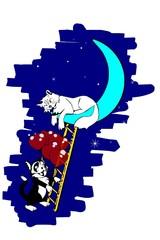 chat dans la lune