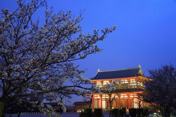 朱雀門と桜