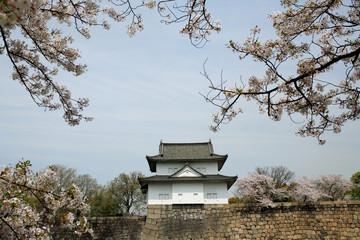 桜咲く大阪城隅櫓