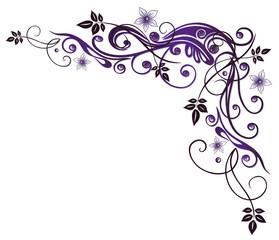 Ranke, flora, Blumen, Blüten, lila, violett