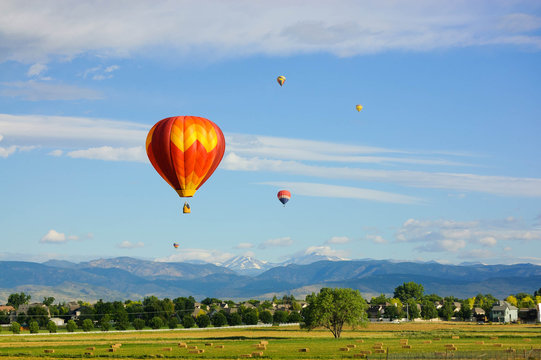 Hot air balloons flying over tranquil landscape