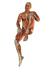 Muskelaufbau Mann in sitzender Pose