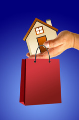Hand and house with shopping bag