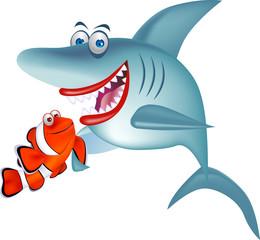 Shark and clown fish
