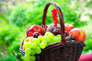 Frisches Obst im Körbchen