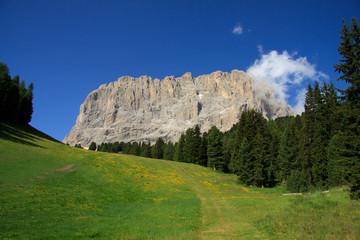 Sassolungo - Val Gardena