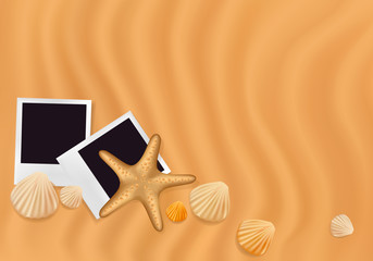 Sea shells with photos on the sand. Vector illustration.