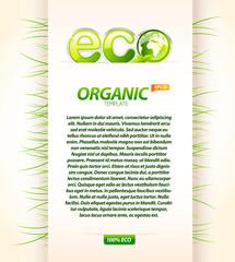 Organic eco template 2