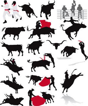 bulls, rodeo and corrida elements