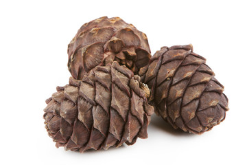 Three cedar cones on a white background