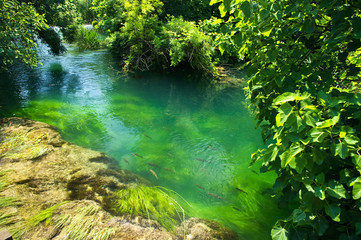 Emerald water in national park Krka, Croatia