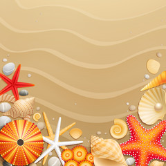 Wall Mural - Shells and starfishes on sand background