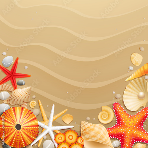 Wall mural Shells and starfishes on sand background