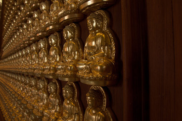 Multiply Golden Buddha  Statue on Wall